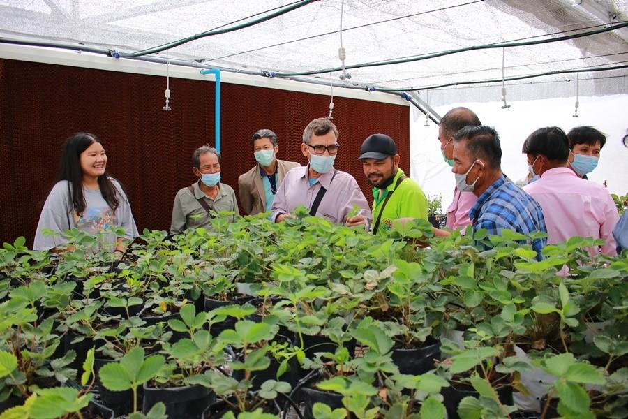 ร่วมจัดอบรมประธานศูนย์เครือข่าย โครงการศูนย์เรียนรู้การเพิ่มประสิทธิภาพการผลิตสินค้าเกษตร